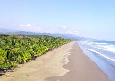 Endless Pristine Beaches